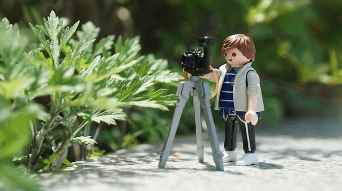 Photographers – Beware!! Save Being Sued!